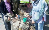 Одесские мусульманки добавляют «долговременную милостыню» к своим привычным делам