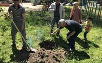 Planting Trees of the Eve of Ramadan: Zaporizhzhia Muslims' Longlasting Charity