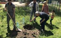 Висаджування дерев перед Рамаданом — довготривала милостиня мусульман Запоріжжя
