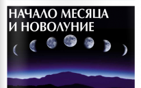 "Газета ""Арраид"" №6 (176) 2014"
