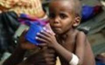 اتحاد المنظمات الإسلامية في أوروبا يصدر بيانا حول مأساة الجفاف والمجاعة في القرن الأفريقي