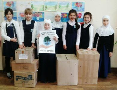 Новые книги и спасенные деревья: гимназисты собрали макулатуру