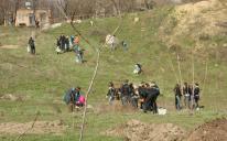 У Дніпропетровську мусульмани, християни й іудеї заклали парк на місці колишнього звалища, працюючи пліч-о-пліч