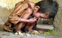 Мусульмане Украины будут молить Всевышнего о дожде для Африки