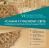 Поспішайте зголоситися до участі в VІ Міжнародній школі ісламознавства