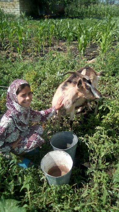 Більше «довготривалої милостині»: одеські мусульманки допомогли ще двом удовам