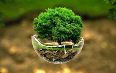 GreenDeen планує маштабну екоакцію у Києві