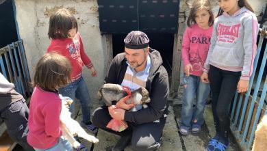 Дійні кози для багатодітних родин Херсонщини: початок нової ініціативи