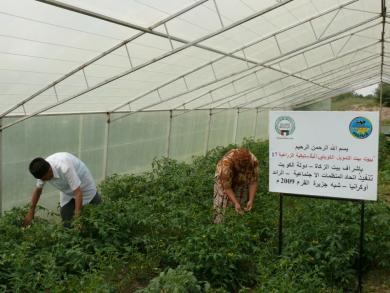Greenhouses For Low-Income Families