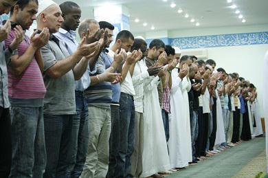 Шейхи из «Аль-Азхар» и Университета Медины проведут Рамадан в Украине по приглашению ДУМУ «Умма» и ВАОО «Альраид»
